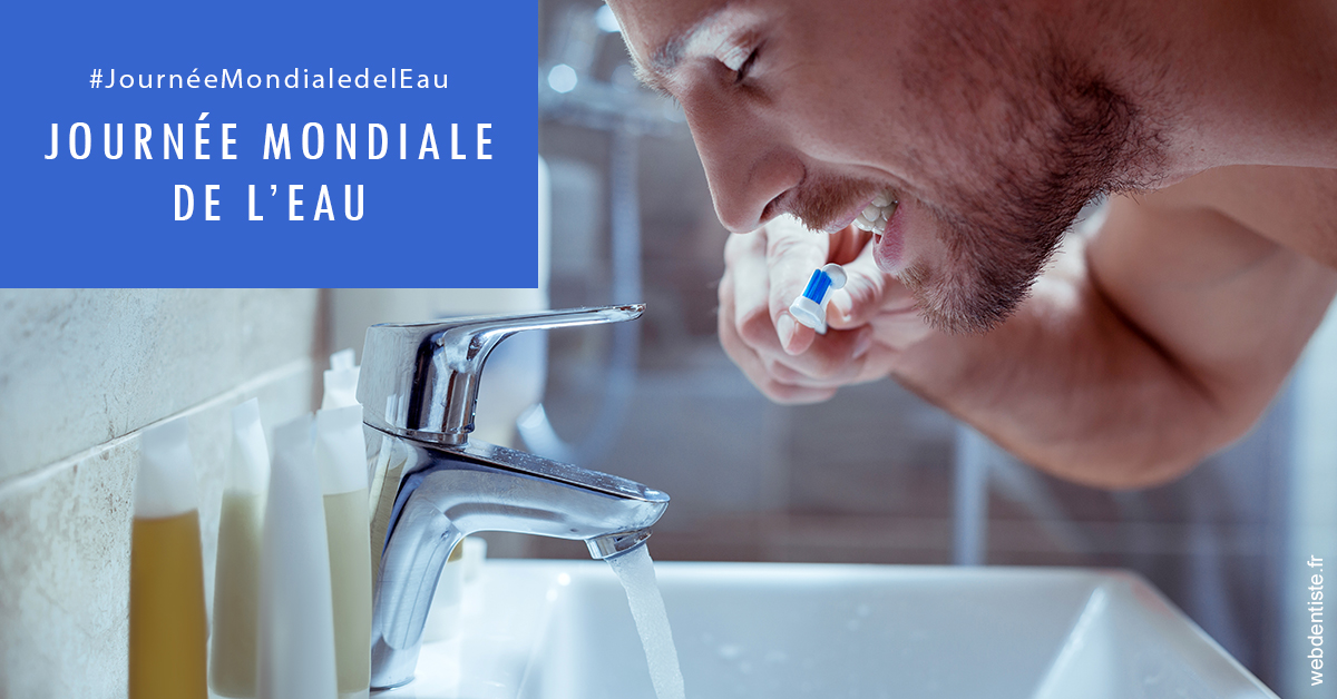 https://dr-bonnel-marc.chirurgiens-dentistes.fr/Journée de l'eau 2