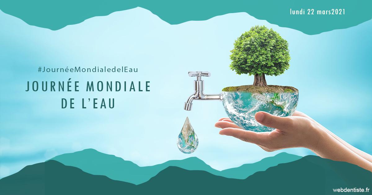 https://dr-bonnel-marc.chirurgiens-dentistes.fr/Journée de l'eau 1